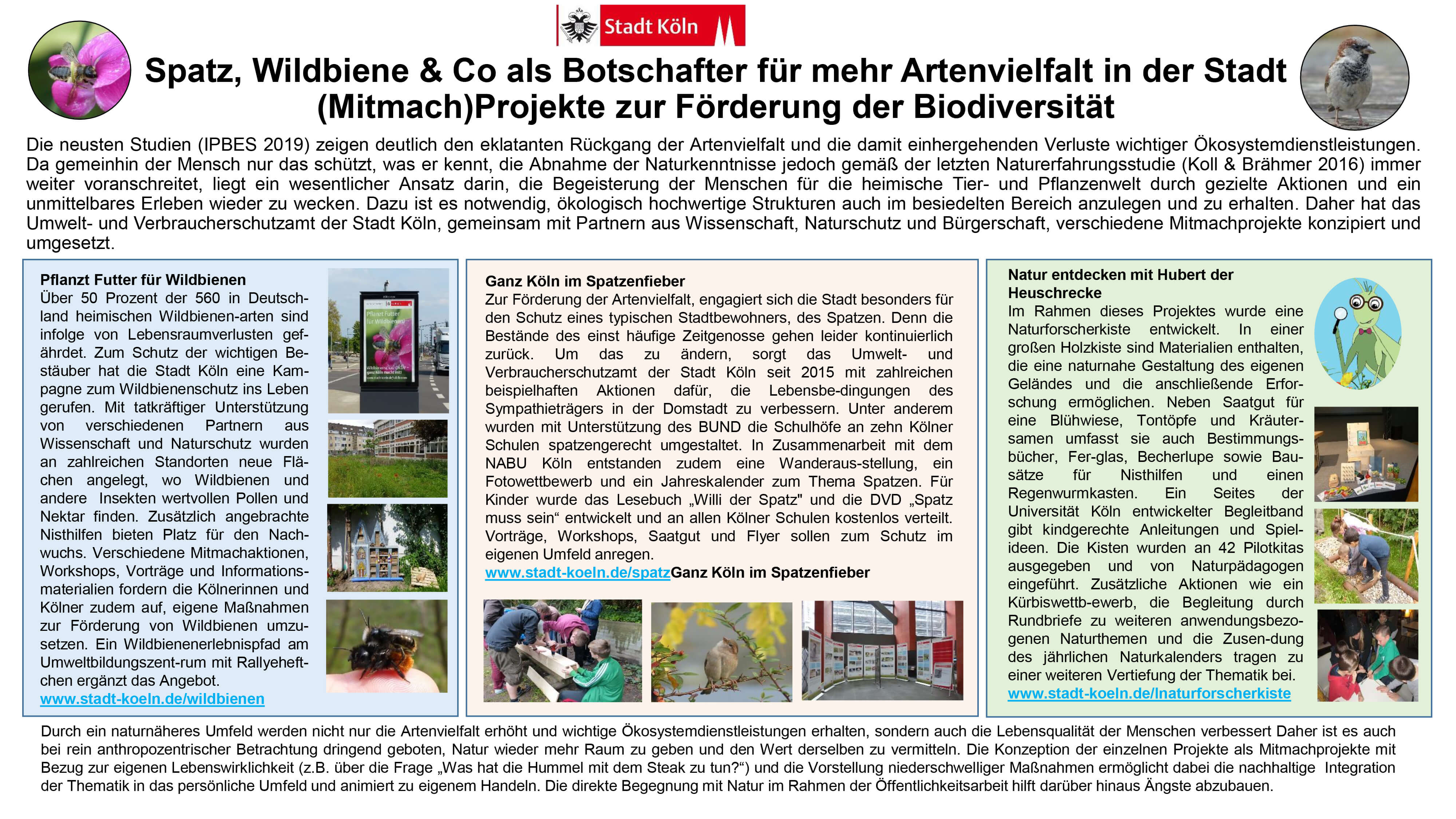 Poster: Stadt Köln