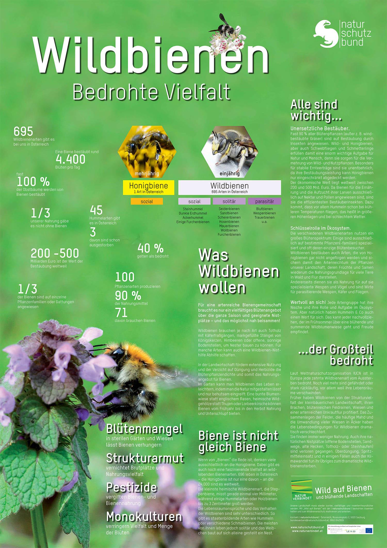Poster: Naturschutzbund