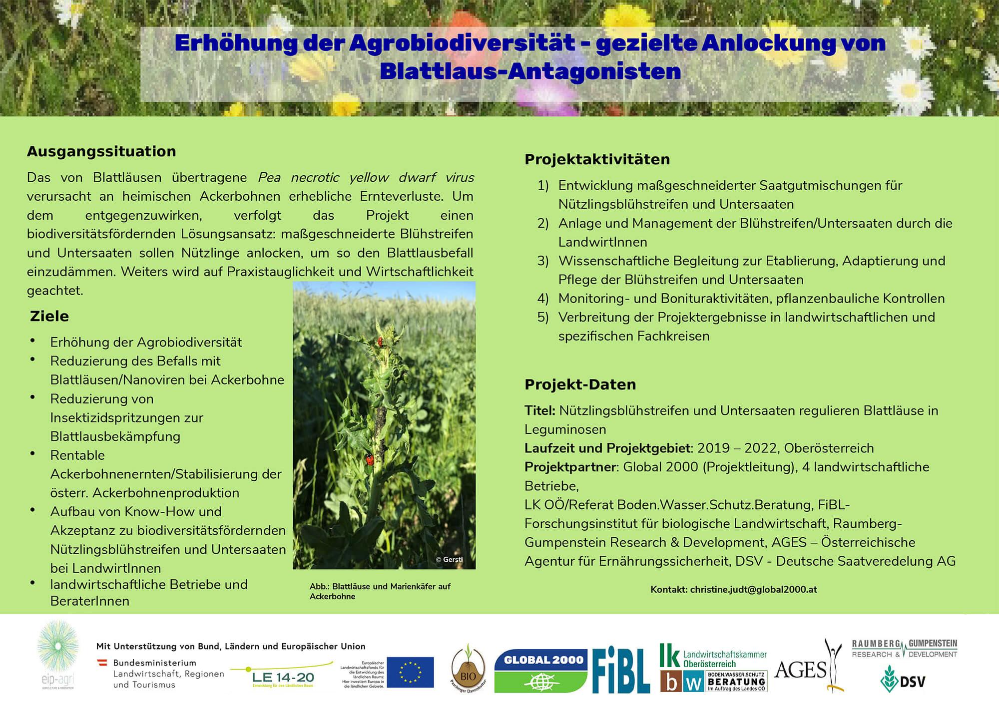 Poster: GLOBAL 2000 Blattlaus-Projekt