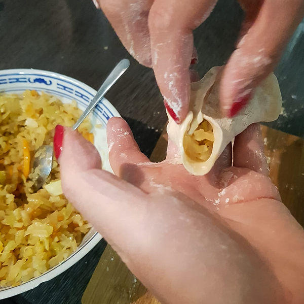 Vegane Gyoza