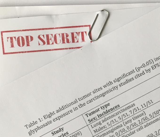 EU-Behörden übersahen Tumorgefunde in bislang geheimen Glyphosat-Studien