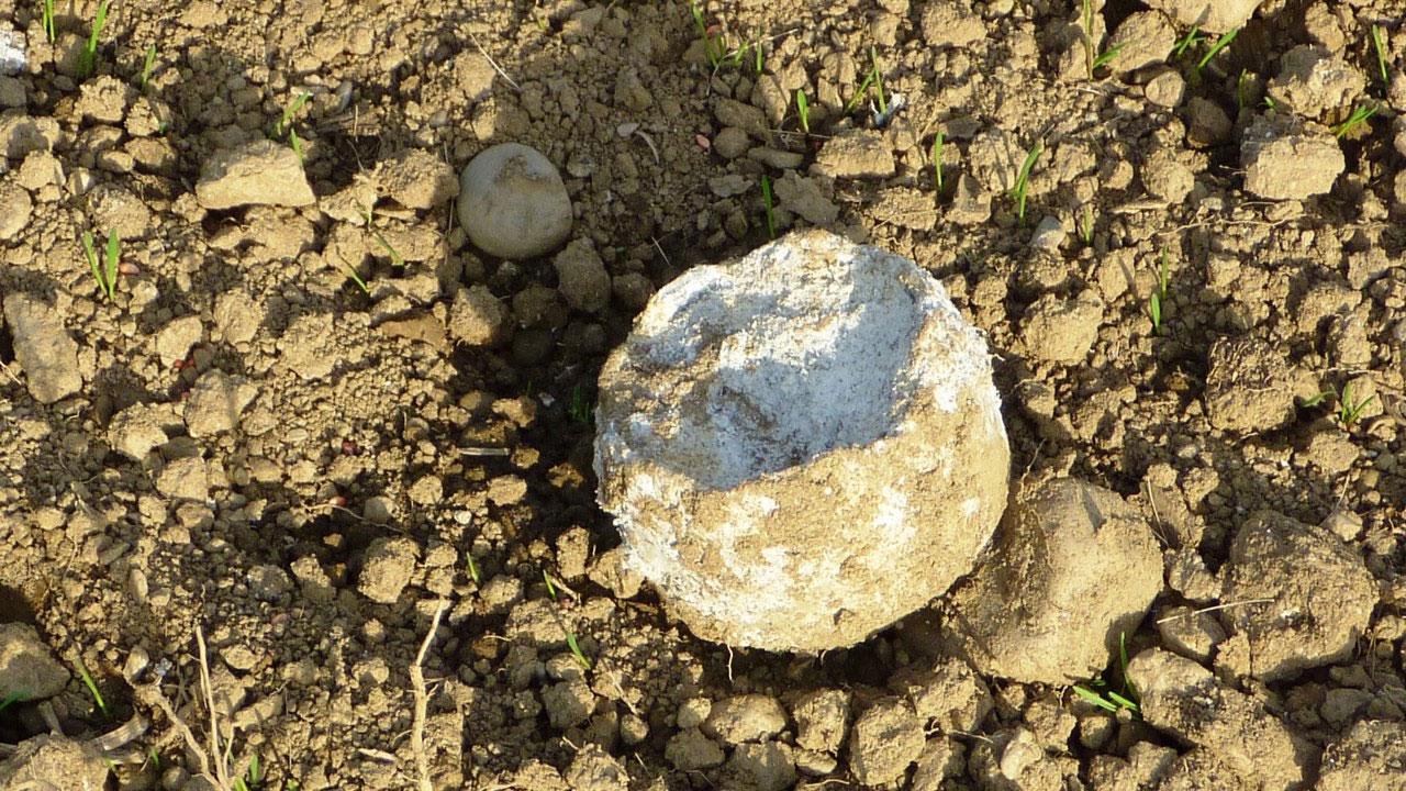 Asbest Rückstände auf einem Feld im Görtschitztal gefunden