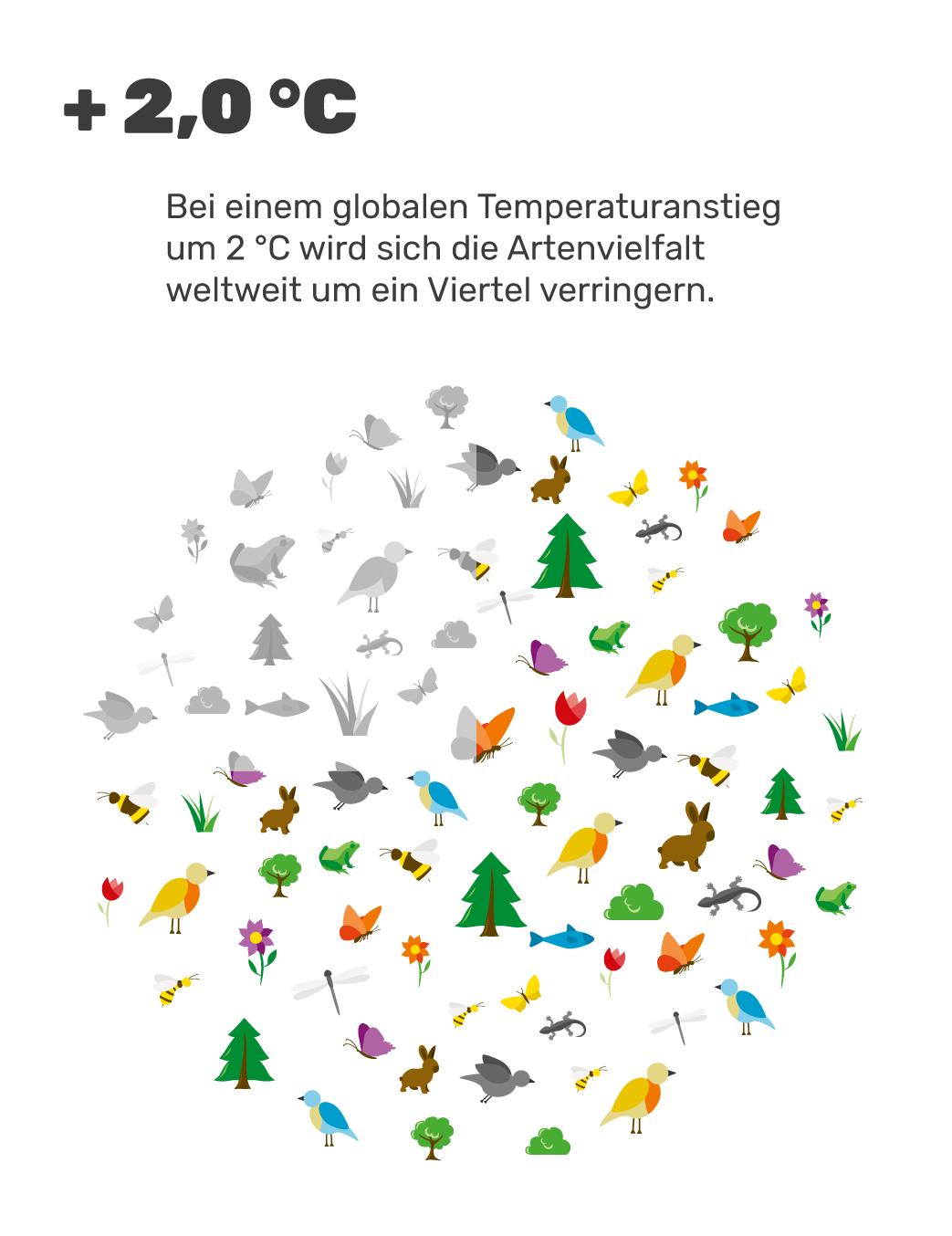 Grafik: + 2 °C führt zu einem Artenverlust von 25 %