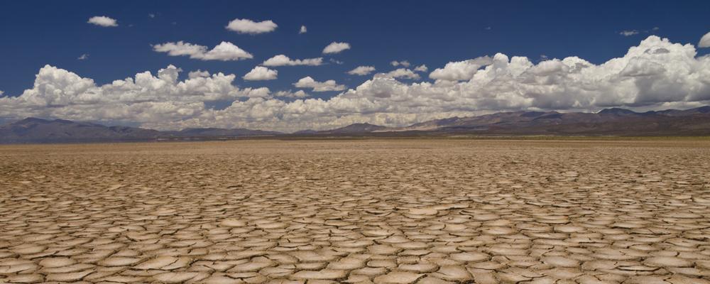 Rissiger, ausgetrockneter Boden auf dem nichts mehr wächst
