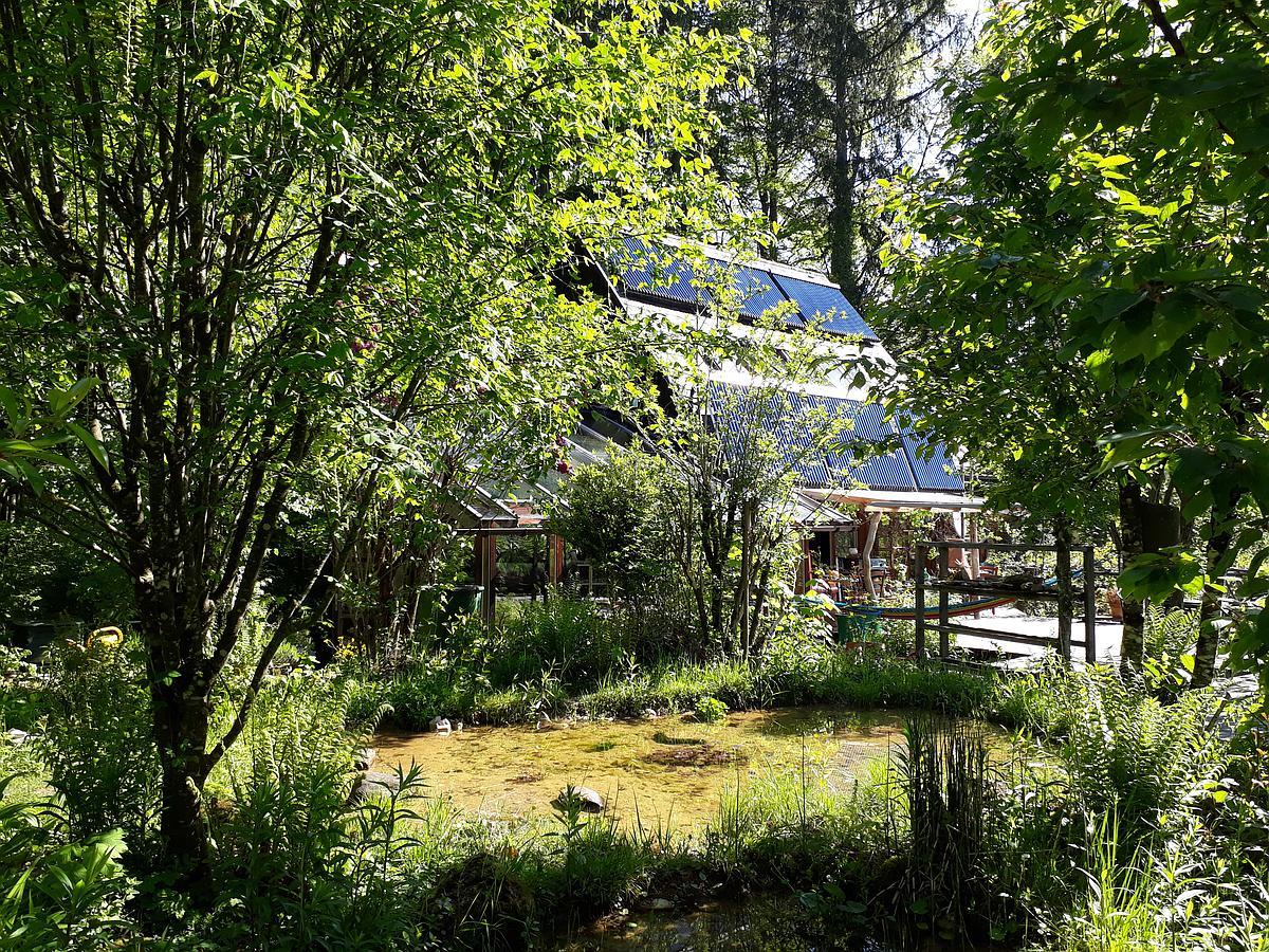 Nationalpark Garten Fotowettbewerb Gewinnerfoto Platz 3