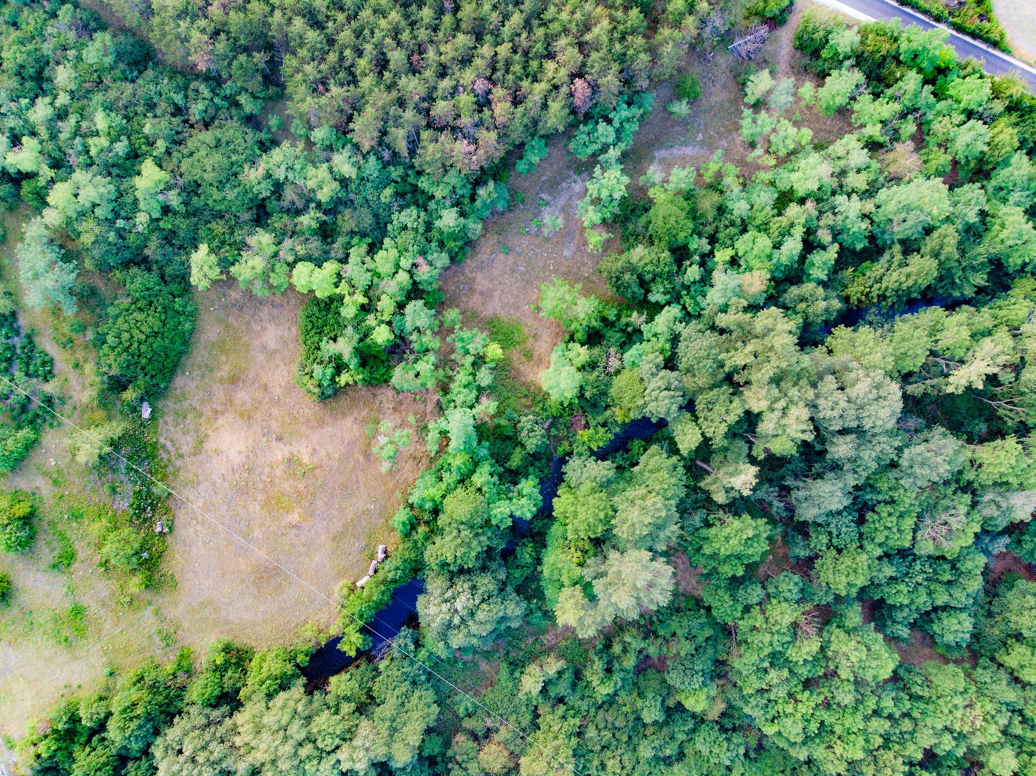 Trockenrasen Naturdenkmal Tattendorf