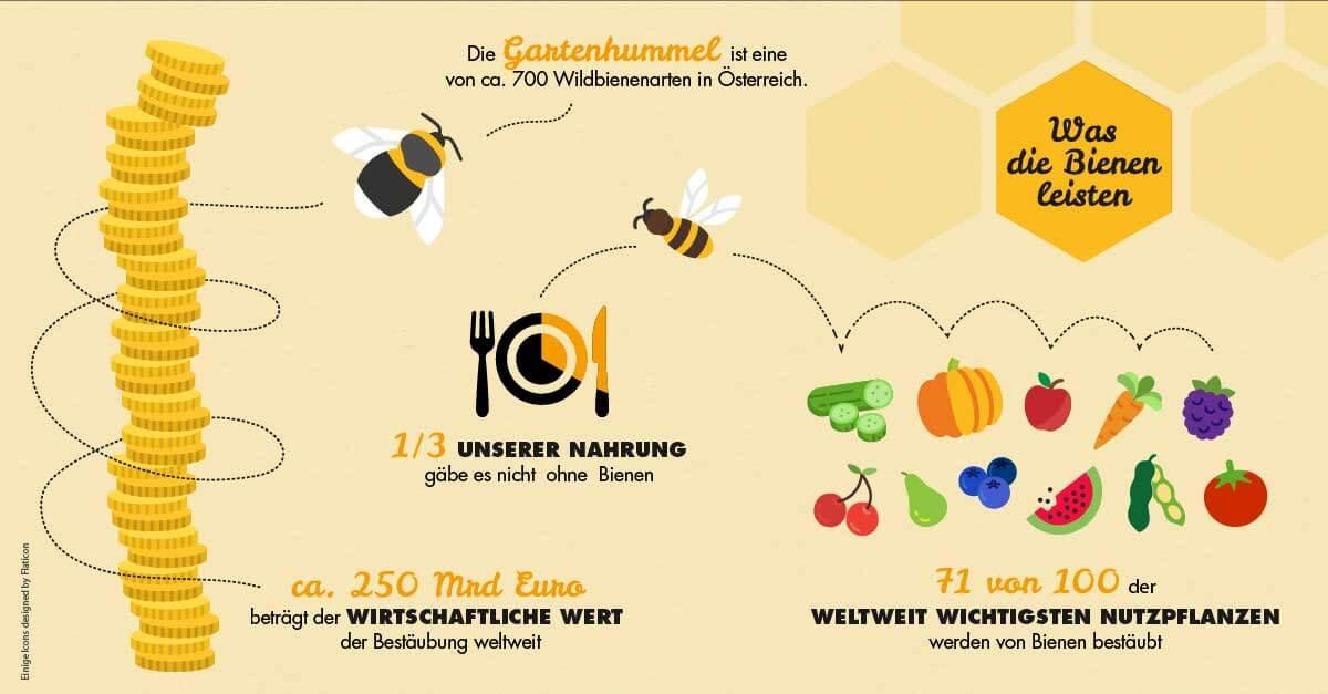 Bienen Infografik: Das leisten die Bienen
