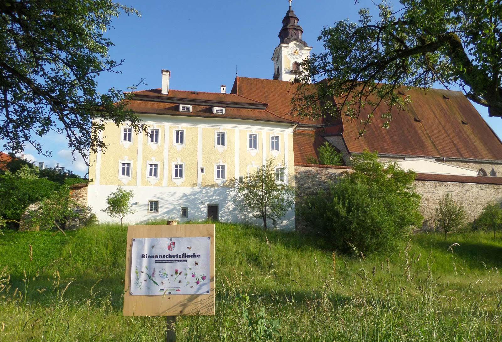 Bienenschutzfläche der Gemeinde Eferding