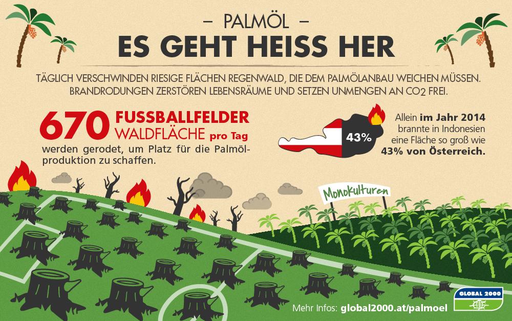 Grafik: Brände durch Palmölanbau