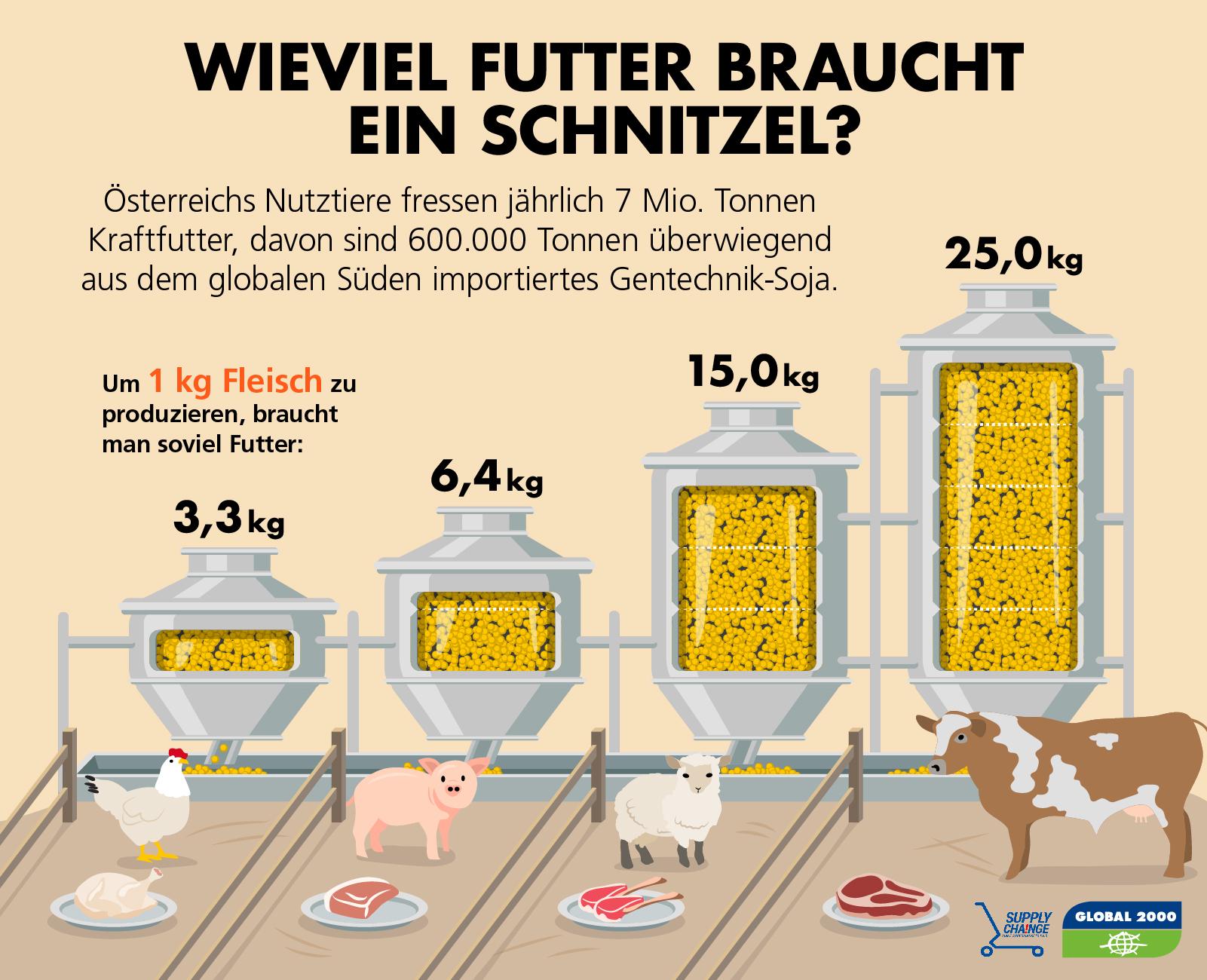 Futtermittelverbrauch für ein Kilogramm Fleisch