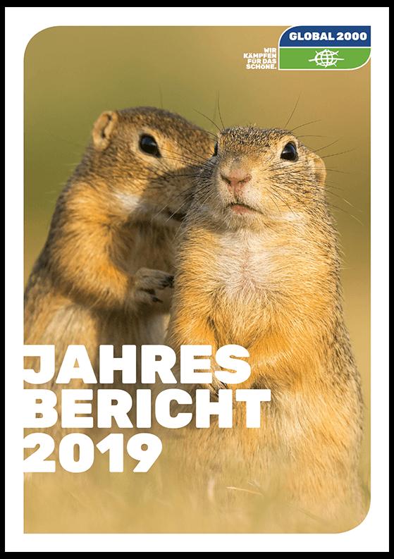 Cover Jahresreport 2019