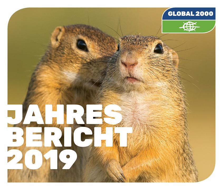 Cover: Jahresreport 2019