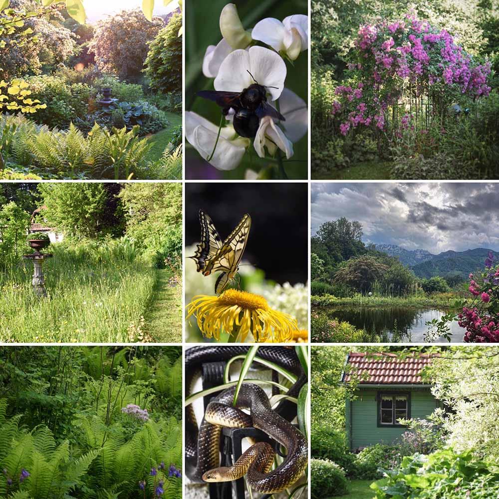 Nationalpark Garten Siegerfoto Platz 3