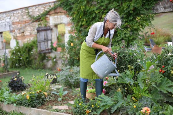 Richtig gießen im Naturgarten (c) goodluz / Shutterstock