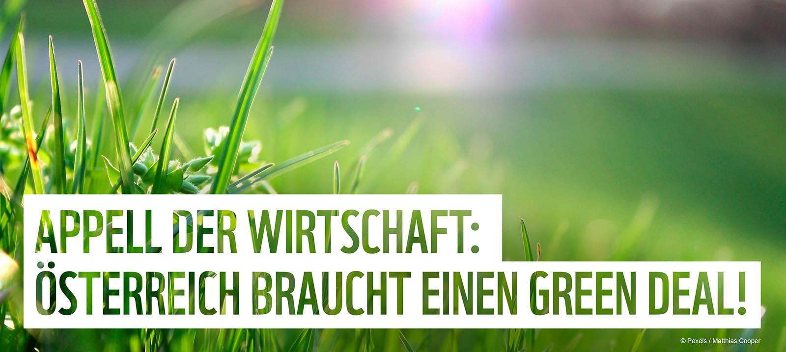 Appell der Wirtschaft: Österreich braucht einen Green Deal