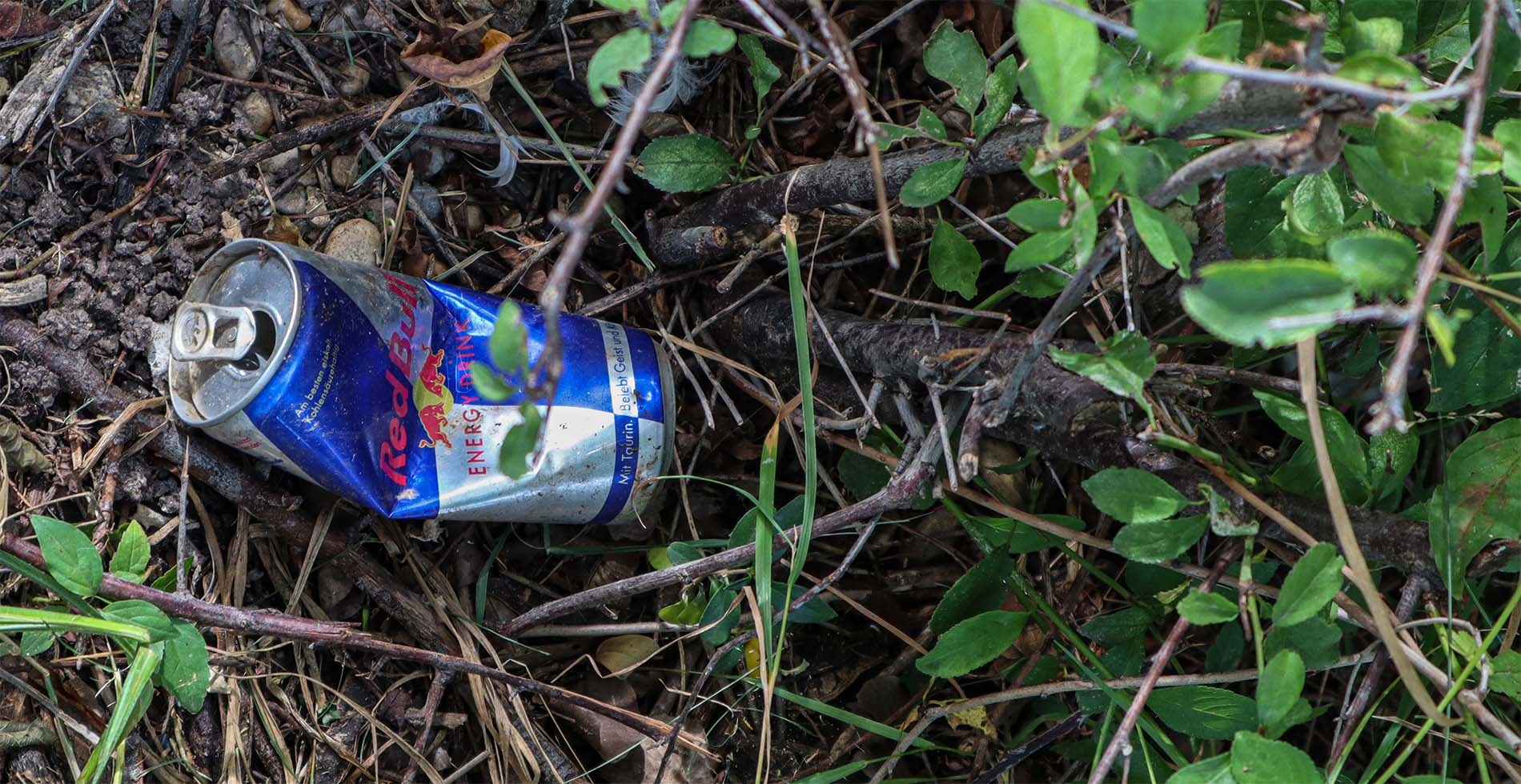 Alu-Getränkedose liegt in der Natur
