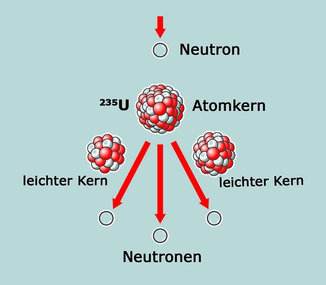 So funktioniert Kernspaltung: Ein Neutron trifft auf einen Atomkern und spaltet diesen in zwei leichtere Kerne. Durch die Spaltung werden weitere Neutronen freigesetzt, die weitere Kerne spalten.