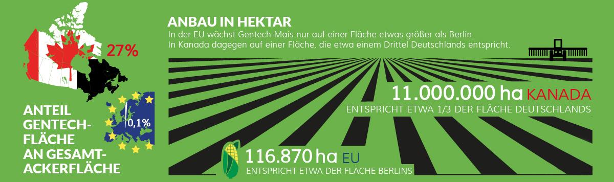 CETA und die Gentechnik