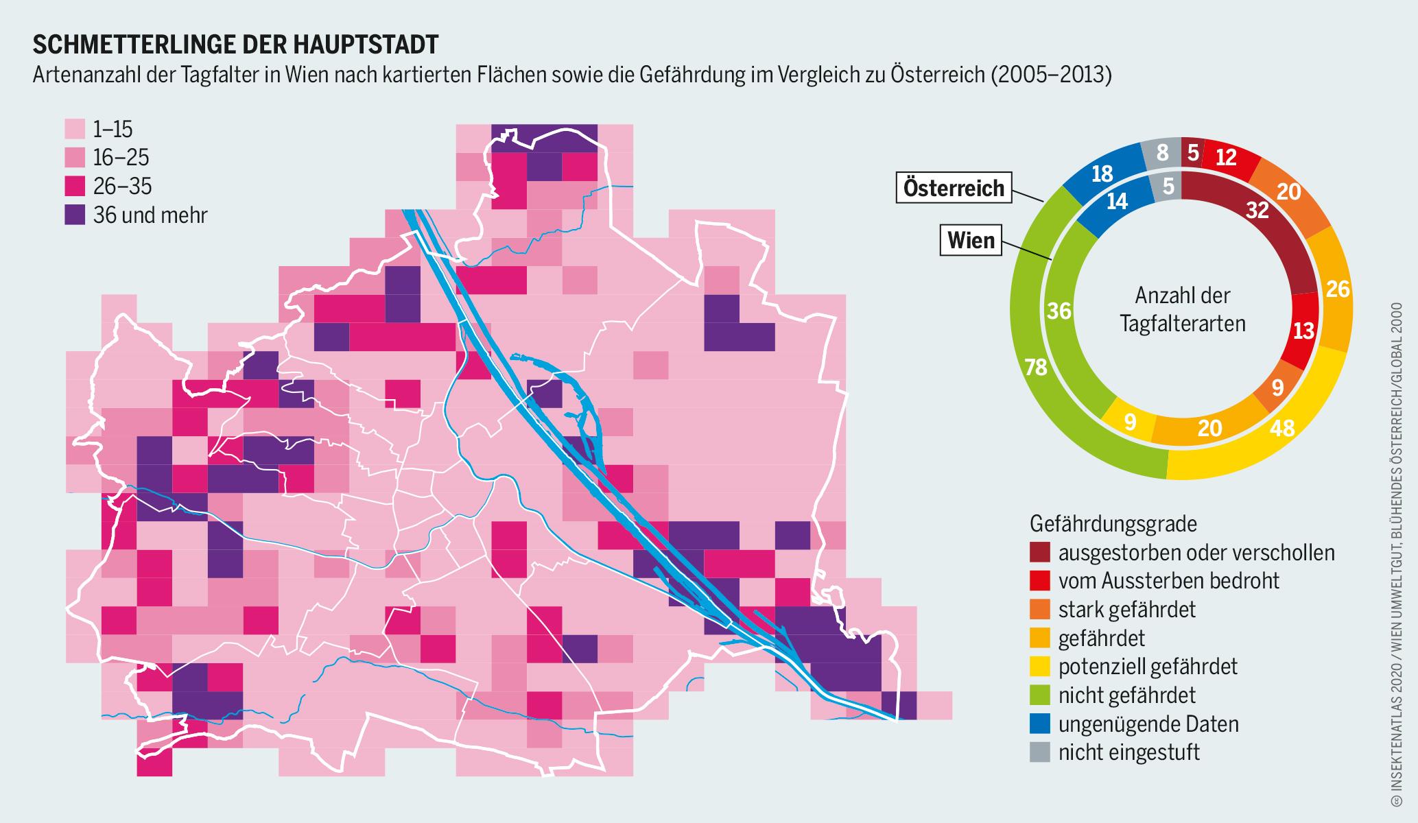 Schmetterlinge in Wien und bedrohte Tagfalter in Wien und ganz Österreich