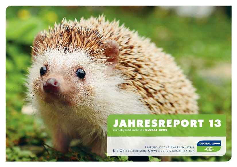 Jahresreport 2013